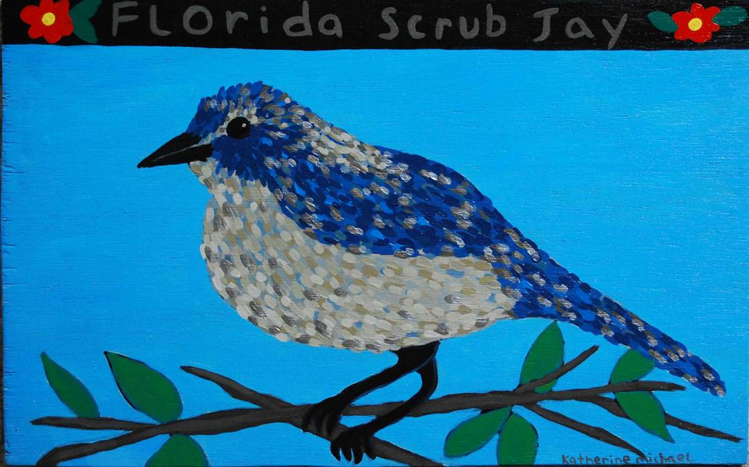 florida scrub jay for web.jpg